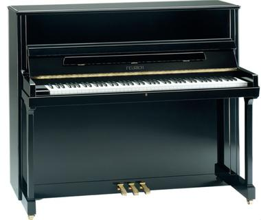 Feurich model 118 upright